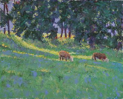 The Red Steers Art Print