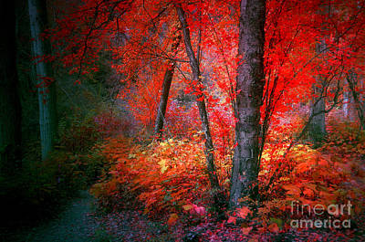 The Red Tree Art Print by Tara Turner