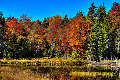 Photograph - The Reflections Of Autumn On Fly Pond by David Patterson