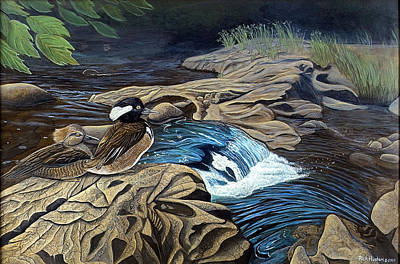 The Resting Place Art Print by Rick Huotari