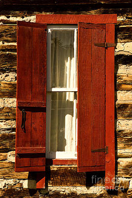Photograph - The Reynold's Cabin Window by Catherine Fenner