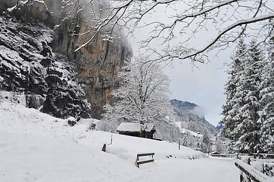 Christmas Holiday Scenery Photograph - The Richness Of Winter by Felicia Tica