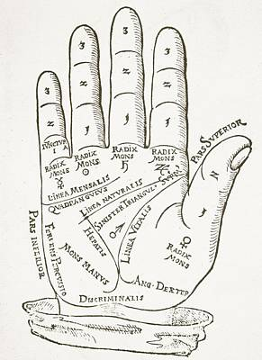 Ligne Drawing - Antique Palmistry Diagram  The Right Hand by German School