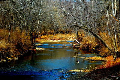 Photograph - The River by Karen Kersey