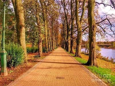 Photograph - The Riverside At The Avenue Of Limes by Joan-Violet Stretch