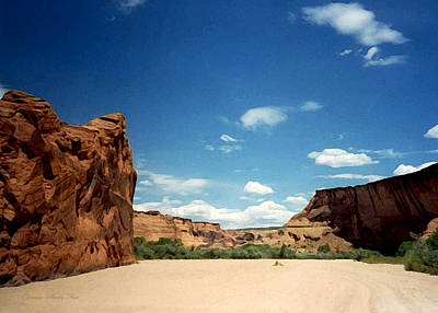 Photograph - The Road Home. Canyon De Chelly 1993 by Connie Fox