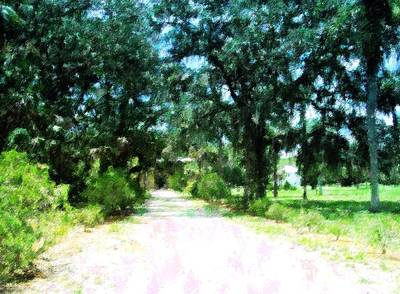Gravel Road Mixed Media - The Road Home by Florene Welebny