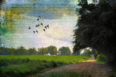 Country Scene Photograph - The Road Home by Jan Amiss Photography