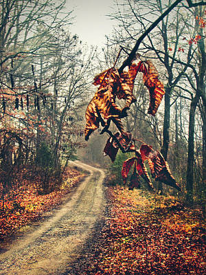 The Road Home Art Print by Jessica Brawley