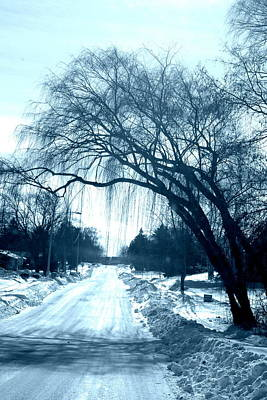 Photograph - The Road Home by Kay Novy