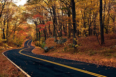 Photograph - The Road Into Autumn by Zev Steinhardt