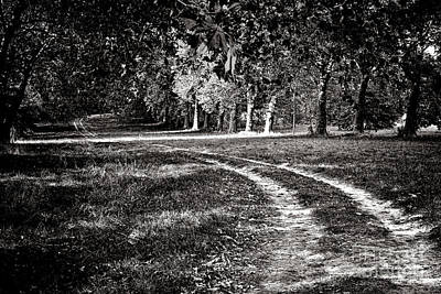 Country Dirt Roads Photograph - The Road Less Than Way Much Less Traveled  by Olivier Le Queinec