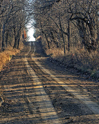 The Road Less Traveled Art Print by Kevin Anderson