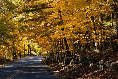Photograph - The Road Less Traveled by Jeff Folger