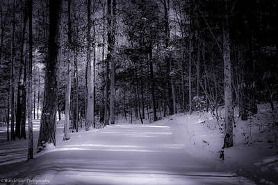 Photograph - The Road Less Traveled by Paul Herrmann
