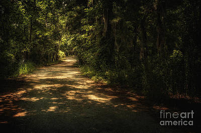 Photograph - The Road Less Traveled by Tamyra Ayles