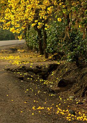 The Road Not Taken Art Print by Ramon Fernandez