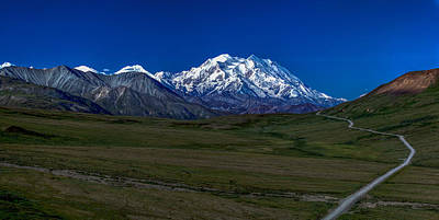 Denali National Park Photograph - The Road To Denali by Thomas Sellberg