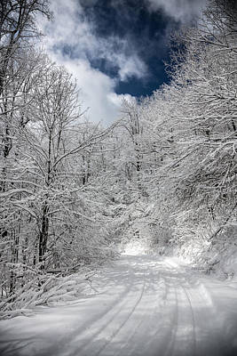 Photograph - The Road To Winter Wonderland by John Haldane