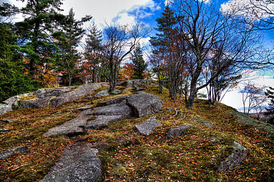 Fir Trees Photograph - The Rocks Above Eagle Bay IIi by David Patterson