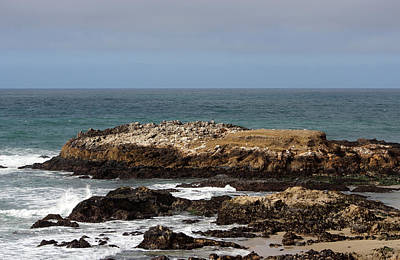 Photograph - The Rocks At Pescadero by Deana Glenz