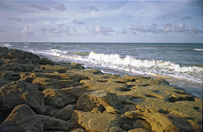 Photograph - The Rocks II. Flagler County.  by Chris  Kusik