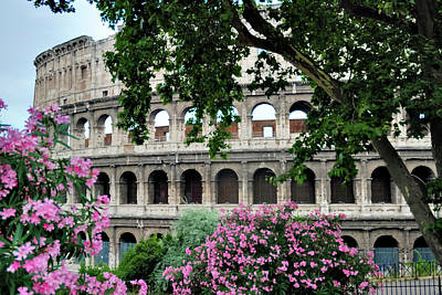 Photograph - The Roman Colosseum by Alan Toepfer