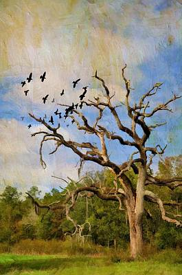 Photograph - The Roosting Tree by Jan Amiss Photography