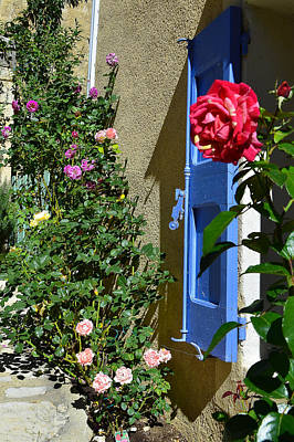 Photograph - The Rose And The Blue Shutters by Dany Lison