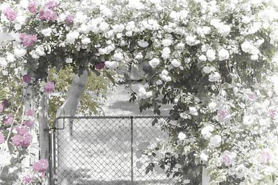 The Rose Arbor Art Print by Elaine Teague