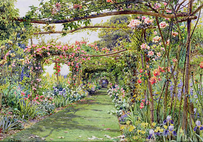 Irises Drawing - The Rose Pergola, Blackhurst House by Ernest Arthur Rowe