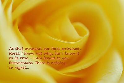Photograph - The Rose Quote by Lisa  DiFruscio