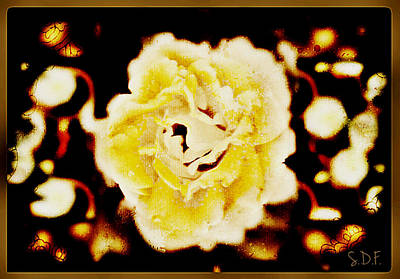 Photograph - The Rose by Sherry Flaker