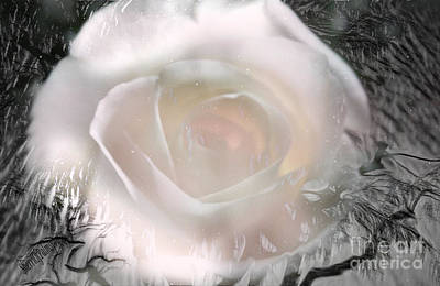 The Rose The Symbol Of Love Art Print