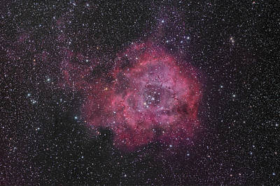 Photograph - The Rosette Nebula by Brian Peterson