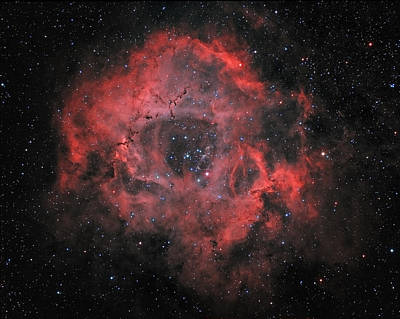 Rusty Trucks - The Rosette nebula by Sara Wager