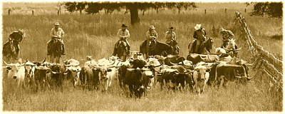 Cattle Drive Photograph - The Round Up by Myrna Bradshaw