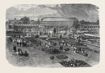 Conservatory Drawing - The Royal Horticultural Societys Gardens South Kensington by English School