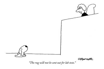 The Rug Will Not Be Sent Out For Lab Tests Art Print by Charles Barsotti