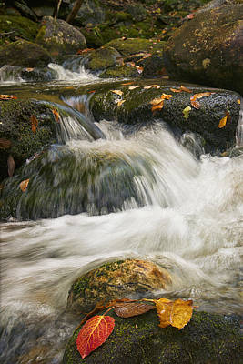 Photograph - The Rush Of The River by Darylann Leonard Photography