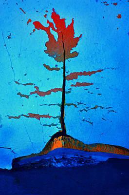 Photograph - The Rust Tree by Tara Turner