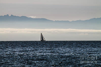 Photograph - The Sail Boat Horizon by Arlene Sundby