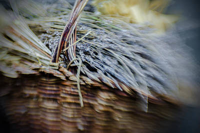 Photograph - The Scent Basket by Celso Bressan