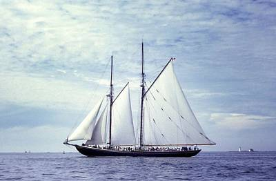 Photograph - The Schooner Bluenose 2 Again by George Cousins