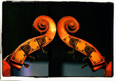 Musical Instruments Photograph - The Scroll by Nadalyn Larsen