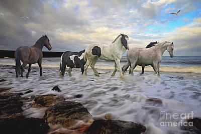 The Sea Horses Art Print by Wobblymol Davis