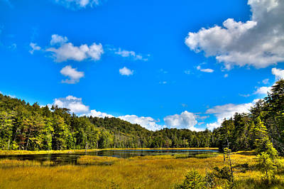 Photograph - The Secluded Fly Pond by David Patterson