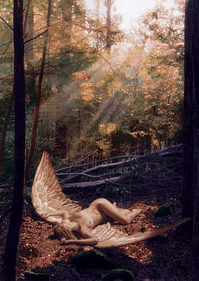 Angel Painting - The Secret Forest by Patrick Whelan