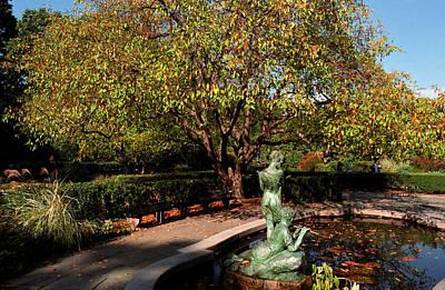 Photograph - The Secret Garden by Cornelis Verwaal