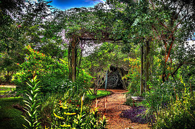 Photograph - The Secret Garden  by David Morefield